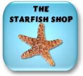 Welcome to The Starfish Shop!